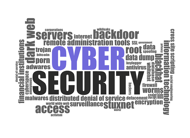 cyber security 1784985 640